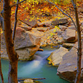 Virgin River In Autumn by Dennis Hammer