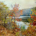 Wampus Pond by Diana Angstadt