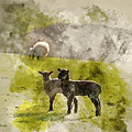 Watercolor Painting Of Beauitful Landscape Image Of Newborn Spri by Matthew Gibson