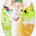 White-tailed Virginia Deer Fawn by A Gurmankin