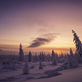 Winter Evening Landscape With Forest, Sunset And Cloudy Sky.  by Oxana Gracheva