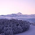 Winter In Switzerland by Susanne Van Hulst