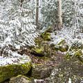 Winter Scene by Richard Kitchen