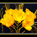 Yellow Flower by Larry White