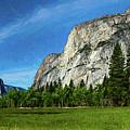 Yosemite Valley Meadow Panorama by Randy Herring
