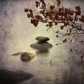 zen stones by Joana Kruse