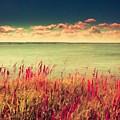 Great Landscape by Malinda Spaulding