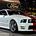 2006 Ford Mustang No 1 by Alan Look