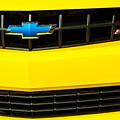 2010 Nickey Camaro Grille Emblem by Jill Reger