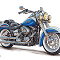 2015 Harley Softail Deluxe by Shannon Watts