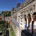 Alcazar Seville Sevilla Andalucia Spain by Paul James Bannerman