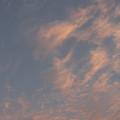 Evening Summer Sky by Masami Iida