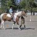 Manito Equestrian Center Benefit Horse Show by Scott Lapp