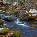 Great Smoky Mountains National Park by Michael Munster