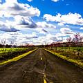 Journey Home by Angus Hooper Iii
