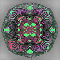 2451 Mandala A by Irmgard Schoendorf Welch