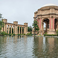 2464- Palace Of Fine Arts by David Lange