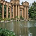 2515- Palace Of Fine Arts by David Lange
