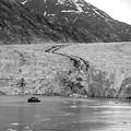 Sawyer Glacier At Tracy Arm Fjord In Alaska Panhandle by Alex Grichenko