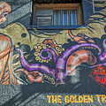 2635- Golden Triangle by David Lange