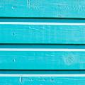Blue Wood by Tom Gowanlock