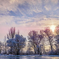 Frozen Water, Snow And Ice On The Dnieper River by Alain De Maximy