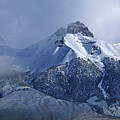 2d07513 Fresh Snow On Mt. Mccaleb by Ed Cooper Photography