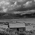 2d07515-bw Abandoned Cabin by Ed Cooper Photography
