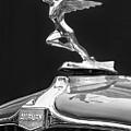 1931 Auburn by Dennis Hedberg