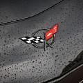 2002 Corvette Ls1 Painted Bw by Rich Franco