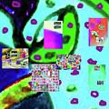 3-3-2016babcdefghijk by Walter Paul Bebirian