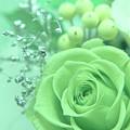 A Gift Of Preservrd Flower And Clay Flower Arrangement, White An by Eiko Tsuchiya