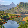 Adam's Peak - Sri Lanka by Joana Kruse