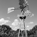 Aermotor Windmill by Rob Hans