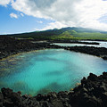 Ahihi Kinau Natural Reserve by Ron Dahlquist - Printscapes