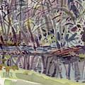 Alder Creek by Donald Maier