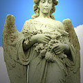Angel Series by Jennifer Martin