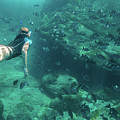 Apnea In Tropical Sea by Benny Marty