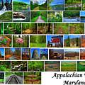 Appalachian Trail Maryland by Raymond Salani III