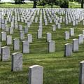 Arlington Cemetery Washington Dc Usa by Paul James Bannerman