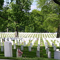 Arlington Cemetery by William Rogers