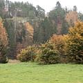 Autumn by Esko Lindell
