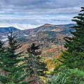 Autumn Foliage On Blue Ridge Parkway Near Maggie Valley North Ca by Alex Grichenko