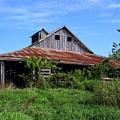 Barn In The Blue Sky by Terri Morris