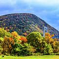 Bear Mountain Bridge  by William Rogers