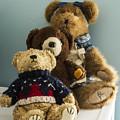 3 Bears by Guy Shultz