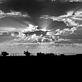 Big Sky Texas Style by Denise Lowery