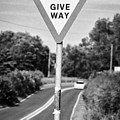 Bilingual English And Welsh Give Way Sign Anglesey Wales Uk by Joe Fox