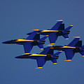 Blue Angels by Raymond Salani III