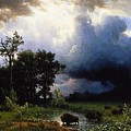 Buffalo Trail  The Impending Storm by Celestial Images